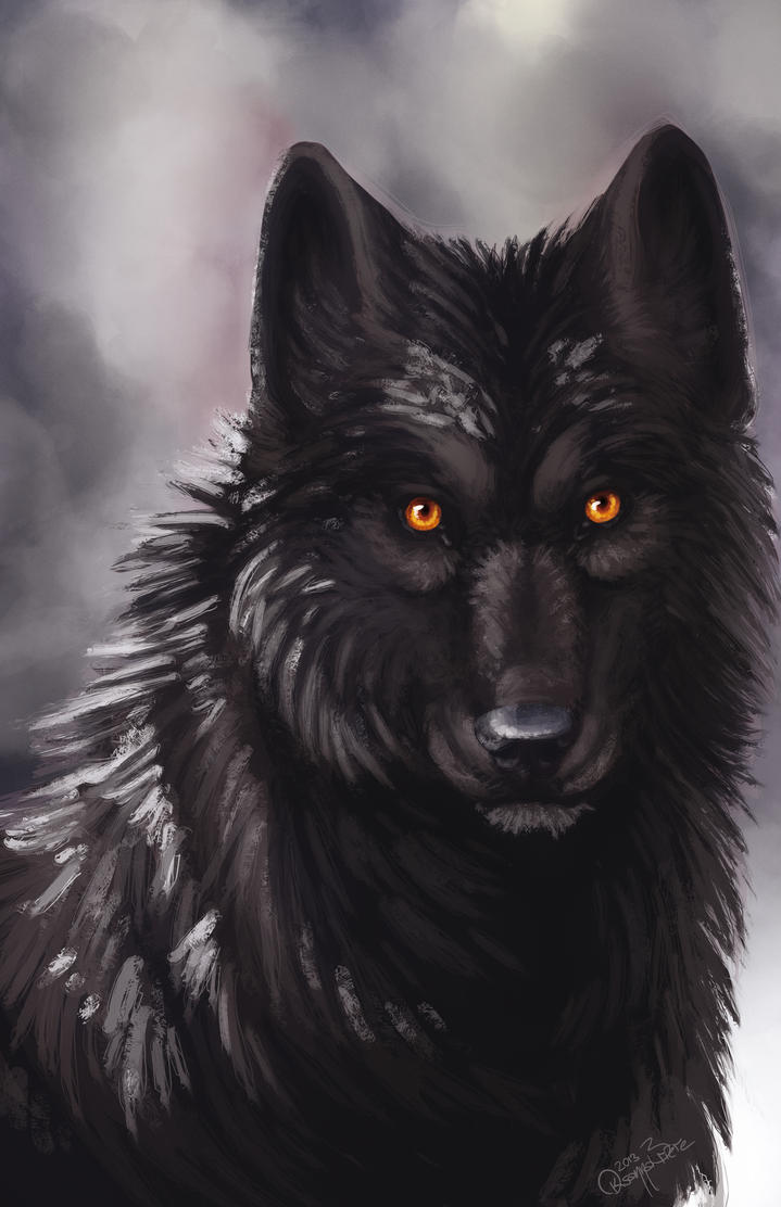 wolf in black and - photo #38