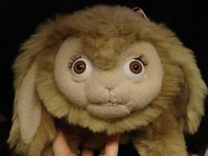 soft bunny 2