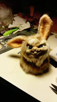 Bunnxy the bunny