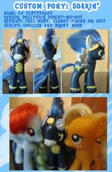 Custom Pony: Soarin by autumnalone