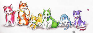 Rainbow Pups