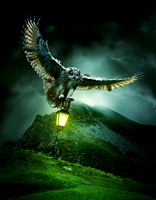Hunters Light by Standoutloud