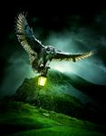 Hunters Light