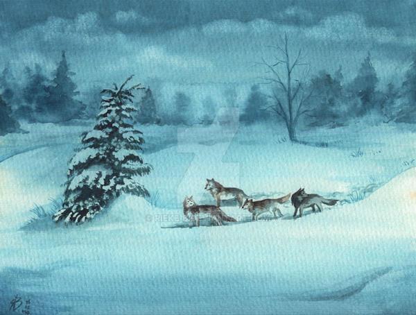 Winter Territory by rieke-b