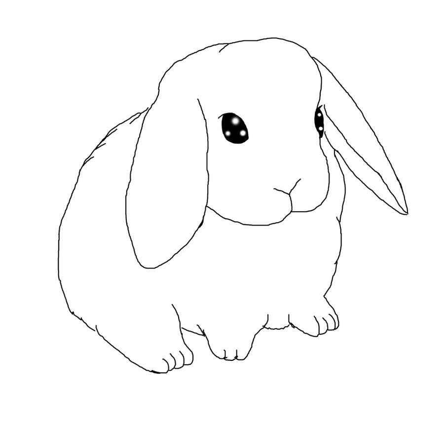 Line Drawing Rabbit : Lop eared bunny lineart by thistleflight on deviantart