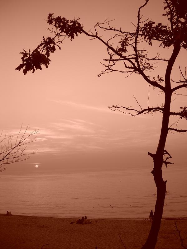 http://fc44.deviantart.com/fs27/i/2008/177/0/9/Sea_3_by_Elfik777.jpg