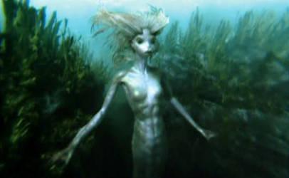 Harry Potter Mermaid Merperson by SebastianMerman