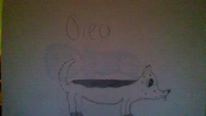 Oreo the dog