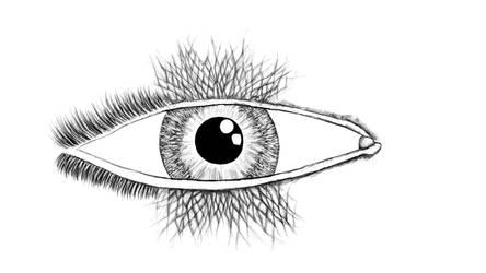 Huge Eye Thingy
