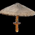 Outside umbrella [PNG FILE]