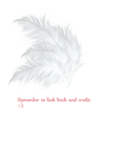 Hat Feathers PNG stock