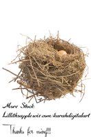 Nest Stock Png by KarahRobinson-Art