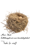 Nest Stock Png