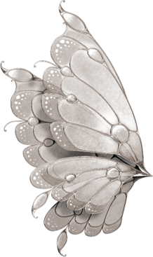 Butterfly Wings by KarahRobinson-Art