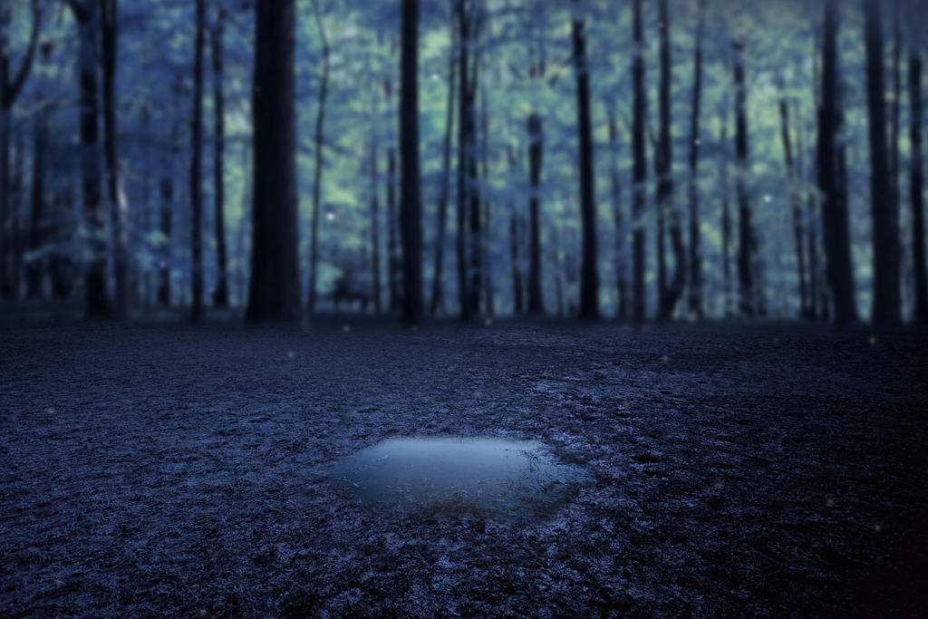 Lonely Puddle Premade Background by LavitaDistress