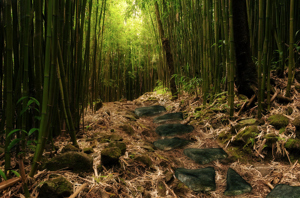 Bamboo Premade Background by LavitaDistress