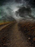 Foggy Path Premade by KarahRobinson-Art