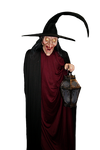 Wicked  Witch PNG STOCK