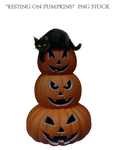 Resting on Pumpkins  PNG STOCK