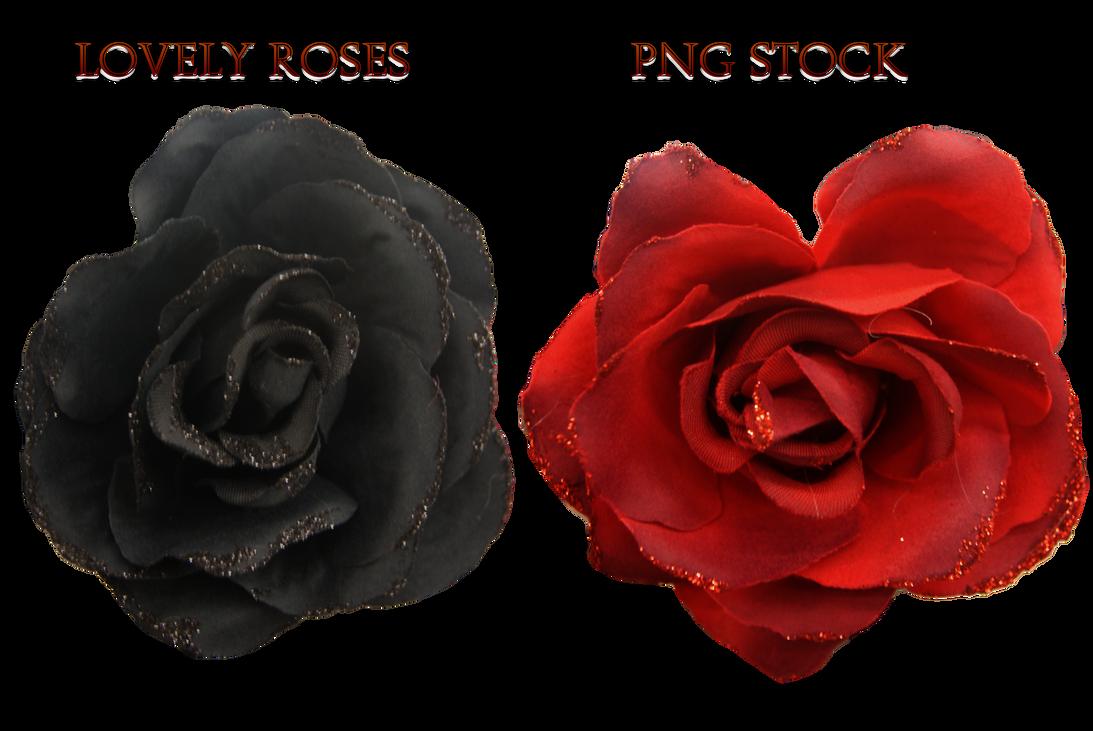 lovely roses png stockkarahrobinson-art on deviantart