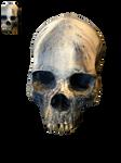 Skull PNG STOCK