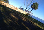 Beautiful Florida Landscape PHOTO STOCK