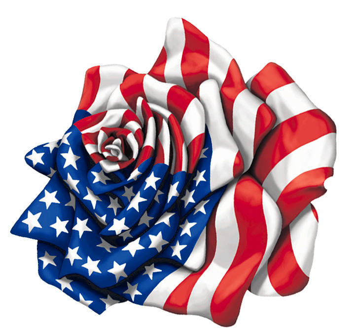American Rose Flag by Patmaniac