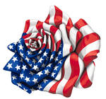 American Rose Flag