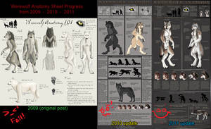 Evolution of Werewolf Anatomy by sugarpoultry