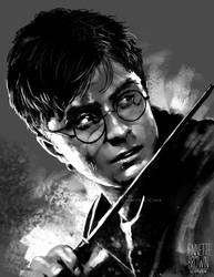 Harry Potter by sugarpoultry