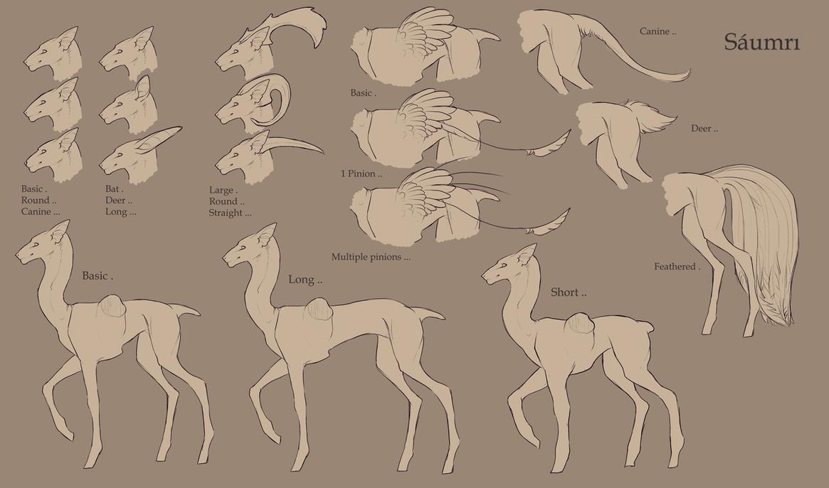 Saumri Species Sheet by SashaWren