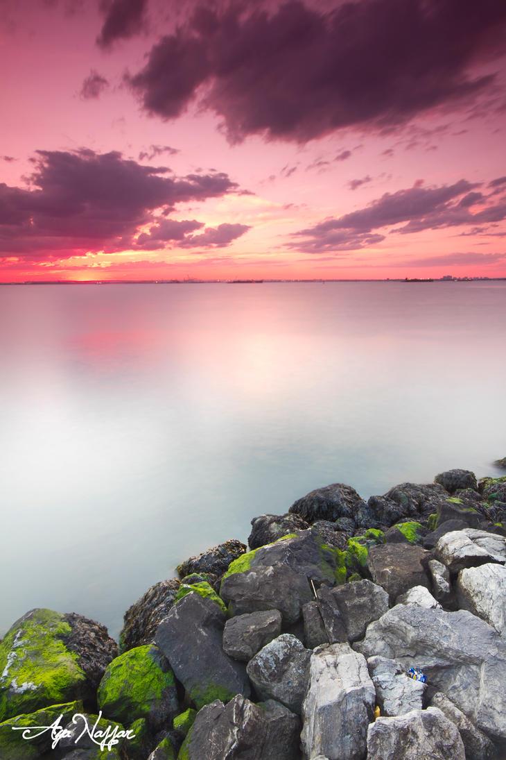 shore by AyaNajjar