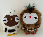 Two new owlets