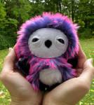 Little Purple Owlet