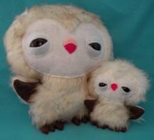 Mom and baby Barn Owls by loveandasandwich