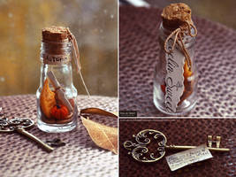 A bottle of autumn