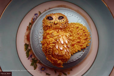 The owl is served