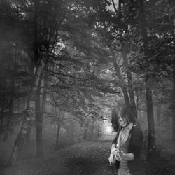Viera on the Road to Oblivion by Dark-Saber