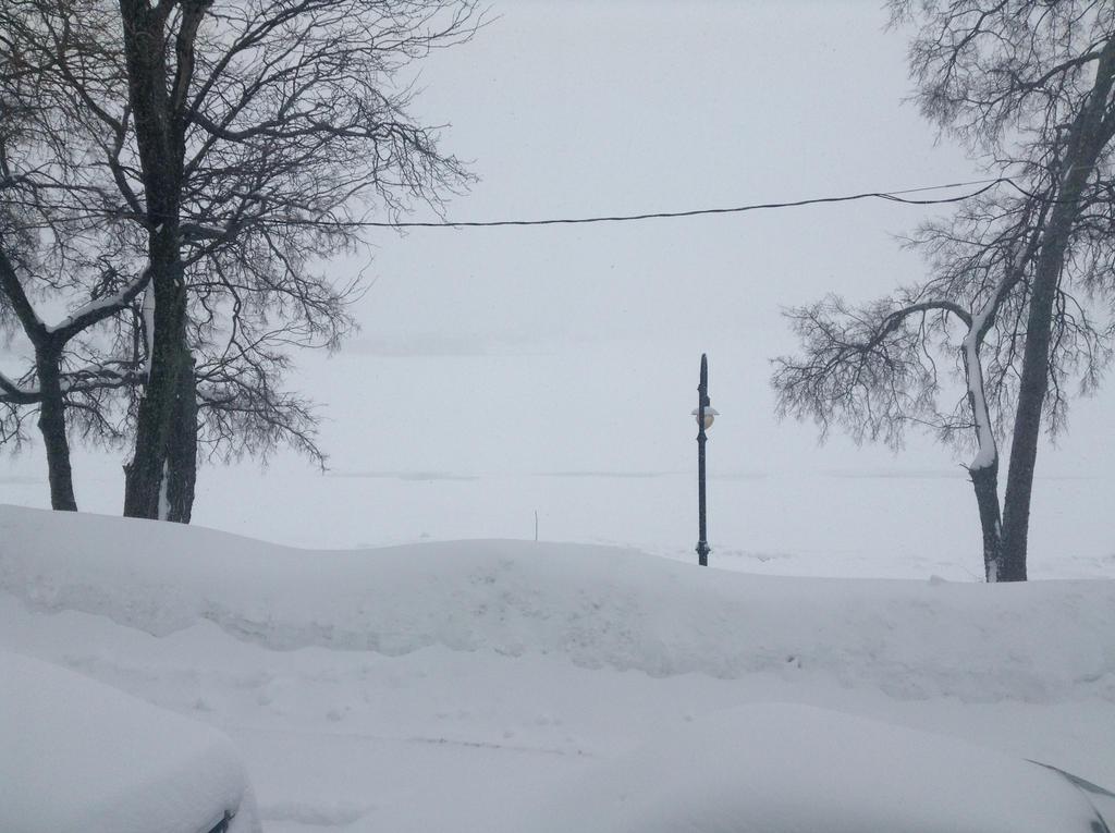 Savin Hill Winter 11 by muffla