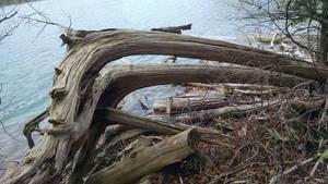 Green Lakes Nov 2015 2