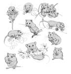Mouse Sketches