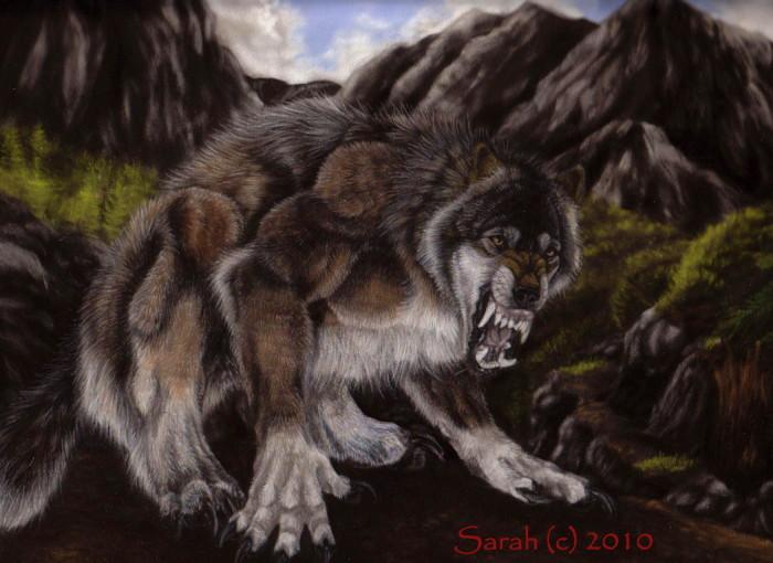 Lone Wolf by Nirvelli-V