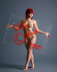Photo Tutorial 2: Copyright by mjranum