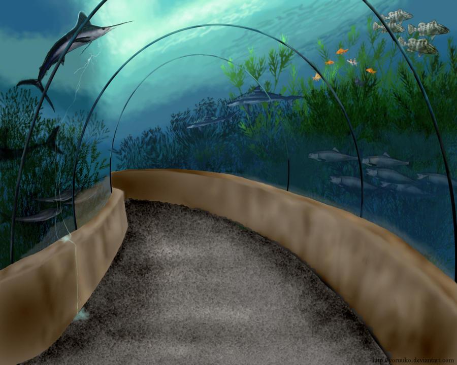 The underwater tunnel by animalartkingdom