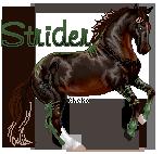 Strider Commission two by AnimalArtKingdom