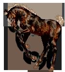 Frisky Foal by AnimalArtKingdom