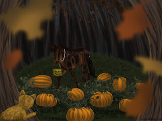 Looking for The Great Pumpkin by AnimalArtKingdom