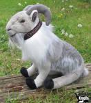 10in Grey Goat Plush