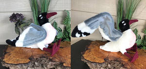 14in Life Sized Franklins Gull Plush