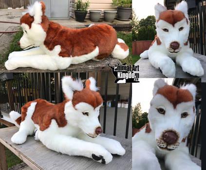44in Custom Handmade Laying Husky Dog Plush